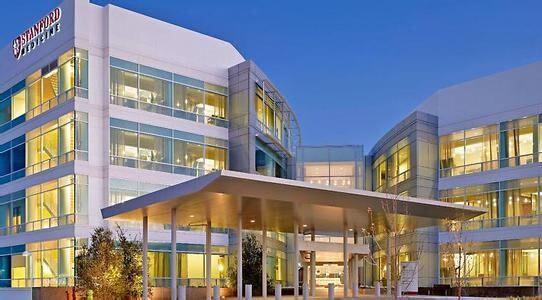 斯坦福医院